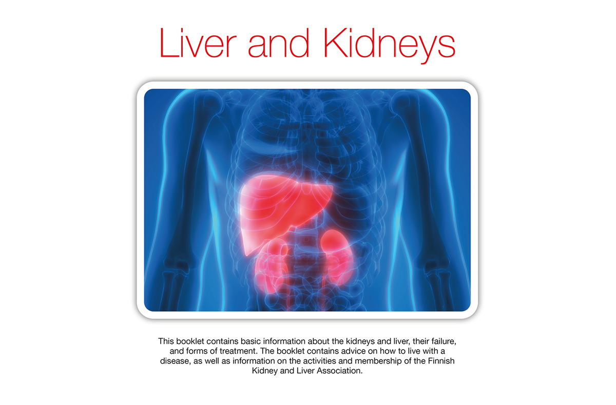 Booklet About Liver And Kidneys Munuais Ja Maksaliitto